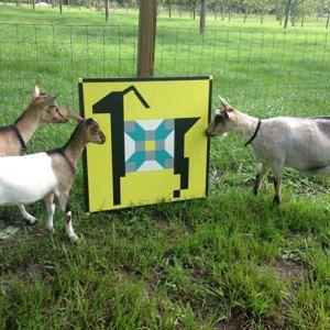 Adorable Goat Barn Quilt Custom Order Choose By Pysbarnquilts Painted Barn Quilts Barn Quilt Designs Barn Quilts