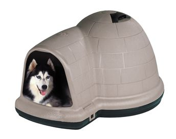 Affordably Spoil Your Dog With The Indigo Igloo Dog House From
