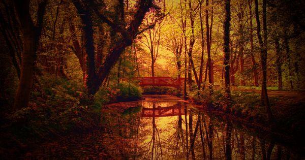 Park Bridge, Autumn wallpaper