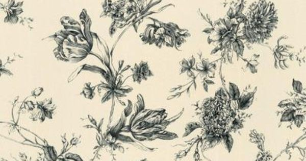For Powder Room The Wallpaper Company 20 5 In W Black