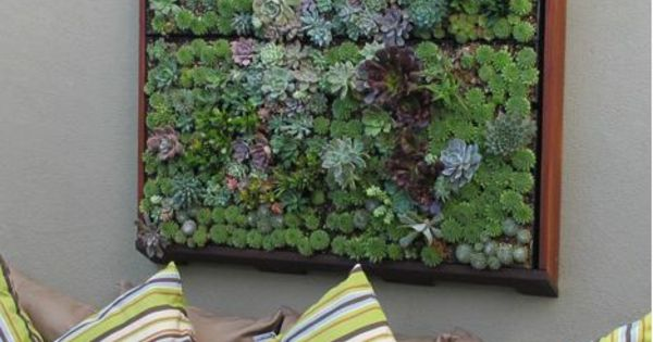 wanddeko ideen gr npflanzen sukkulenten balcony and plants pinterest wanddeko ideen. Black Bedroom Furniture Sets. Home Design Ideas