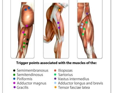 Pin By Darlene W On Health And Fitness In 2020 Trigger Points Trigger Point Therapy Massage Therapy
