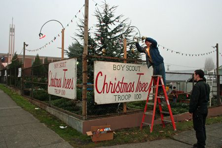 Christmas Tree Lots Open For Business My Ballard Christmas Tree Lots Christmas Tree Farm Christmas Tree