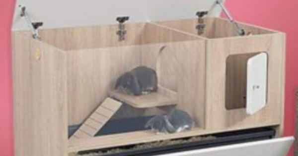 clapier d 39 interieur animaux val de marne pets pinterest animaux lapins et. Black Bedroom Furniture Sets. Home Design Ideas