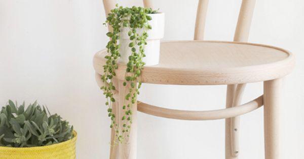 Rieten Strandtas Dille En Kamille : Woodenchair plants pillows dille kamille home