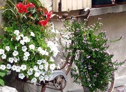 Les v los fleuris au jardin deco jardin pinterest le v lo fleuri et le jardin for Decoration jardin velo