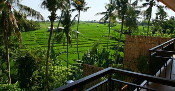 Villa Tembaga Villa Luxury Villa Rentals Villa Rental
