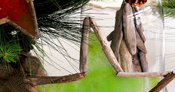 How to make holiday christmas stars using driftwood and for How to make stained glass in driftwood