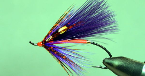 Shewey 39 s spawning purple spey sbs by charlie dickson for Howell s motor freight