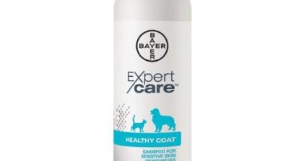Bayer Expertcare Healthy Coat Shampoo For Sensitive Skin 12 Ounce Pet Supplies Sensitive Shampoo Cat Shampoo Healthy Shampoo