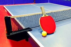 Pin By April Mactal On L Table Tennis Equipment Tennis Quotes Table Tennis Rubber