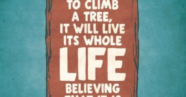 If you judge a fish by its ability to climb a tree,