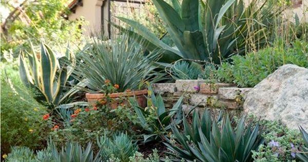 Spanish Plants Garden Design Sandy Koepke Interior Design