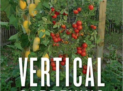 vertical gardening ideas / images