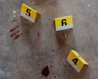 Pin On Forensic Courses Criminal Investigation Sifs In