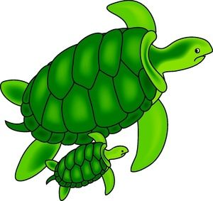 39++ Sea turtle clipart images information