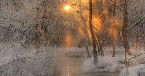 Beautiful winter scene!