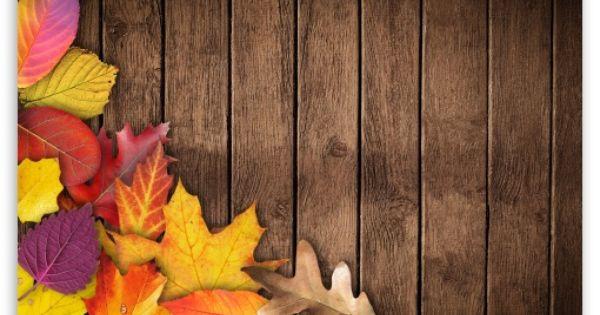 Autumn Background Hd Desktop Wallpaper Widescreen High Definition Fullscreen Mobile Dual Monitor Fall Wallpaper Wallpaper Fall Banner