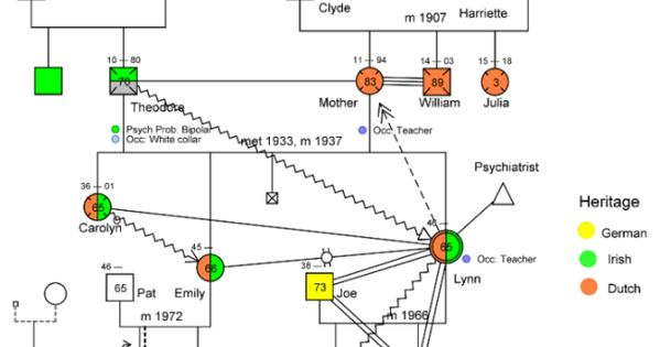genogram  used to map a family and family dynamics  issues