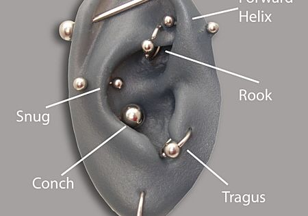 Different types of ear piercings. Conch