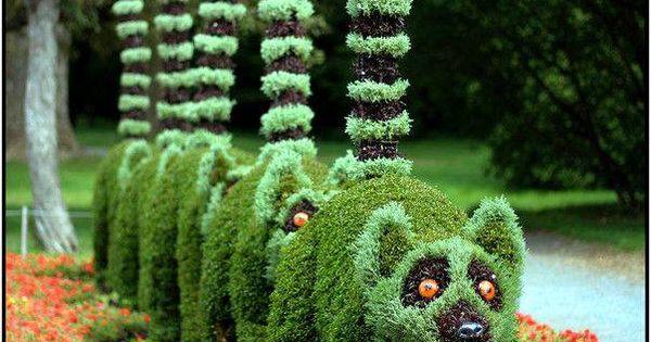 Amazing Topiary Terrific Topiary Pinterest Topiaries