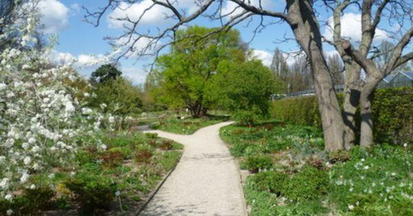Herrenhauser Garten Hannover Berggarten Botanischer Garten Garten Hannover Herrenhauser Garten