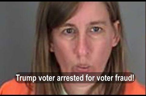 trump voter fraud adfc