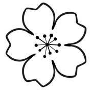 Cherry Blossom Template Flower Templates Printable Flower Template Paper Flower Template