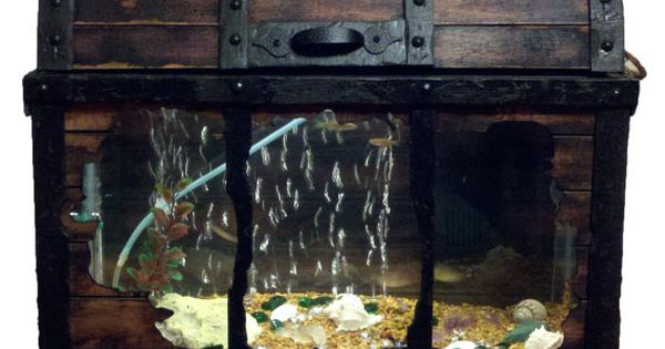 Year end clearance little treasures 10 gallon fish for Shivers fish house
