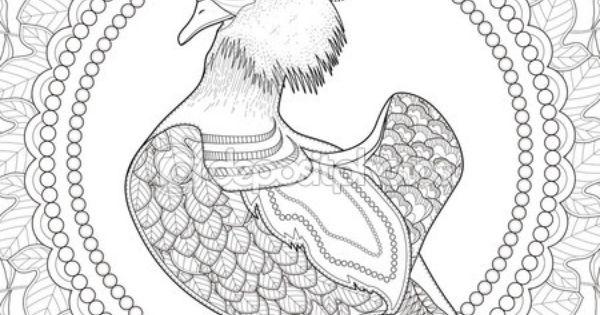 Patos Para Colorear Para Para Con Para Vector Stock Sin: Página Para Colorear De Pato Mandarín Hermosa