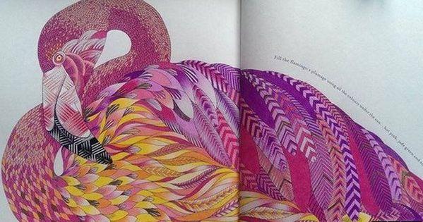 Adult Colouring Book Brings Millie Marotta Top 10 Success