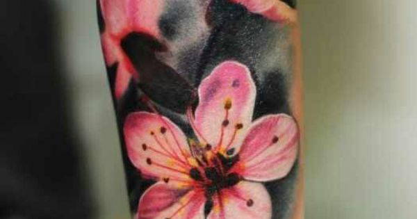 Half Arm Cherry Blossom Tattoo Tattoos Pinterest Tattoo Tatting And Piercings