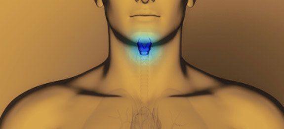 Epingle Sur Hypothyroidie