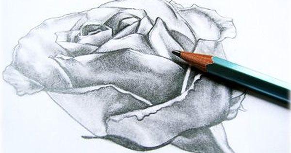 رسومات بنات لوحات فنيه لاجسام نساء لوحات بنات Roses Drawing Rose Painting Rose Art