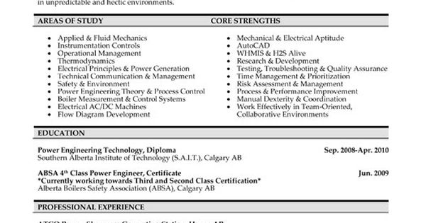 Click Here to Download this Power Engineer Resume Template!   - it risk assessment template