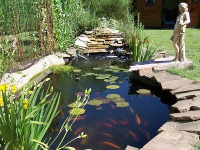 Bassin De Jardin Ko Jardin Japonais Pinterest Bassin De Jardin Bassin Et Jardins