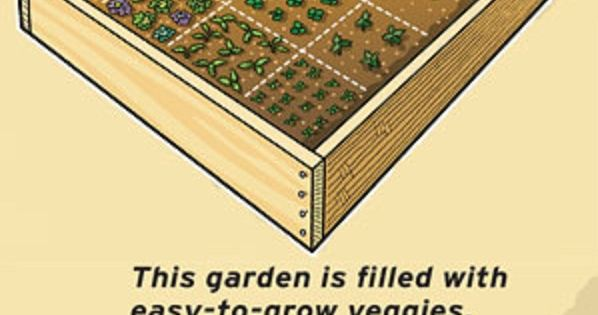 A beginner's guide to gardening - no green thumb necessary. gardening beginner
