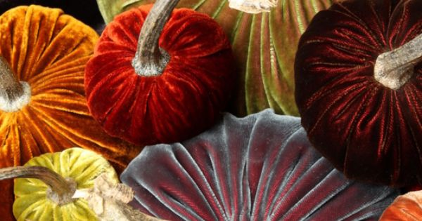 Velvet Pumpkins!!! I have some and LOVE them! by Daria Knowles