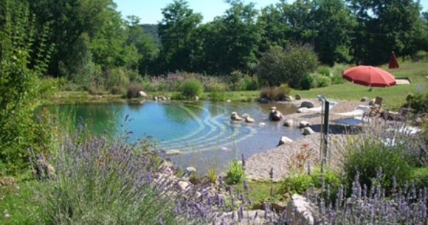 Love The Beach I Would Prefer White Sand Natural Swimming Pool Out Door Pinterest Natural