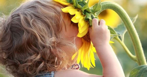 just love this! Sunflowers are me favorite! coupled with the black and