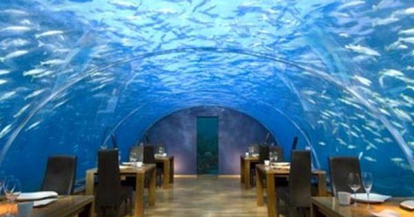 The 29 >> Underwater Restaurant in Dubai | Places I Would Like To Go | Pinterest | Underwater, Restaurants ...
