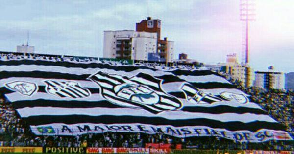 Pin De Emanuelly Cristiny Cardoso Em Figueirense Futebol Clube