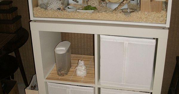 IKEA Billy Roborovski Hamster Cage hampster ideas Pinterest Igel ...