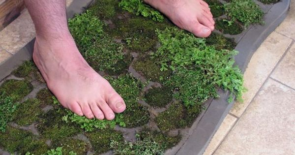 How to make a moss shower mat awesome this is awesome for Make a moss bath mat