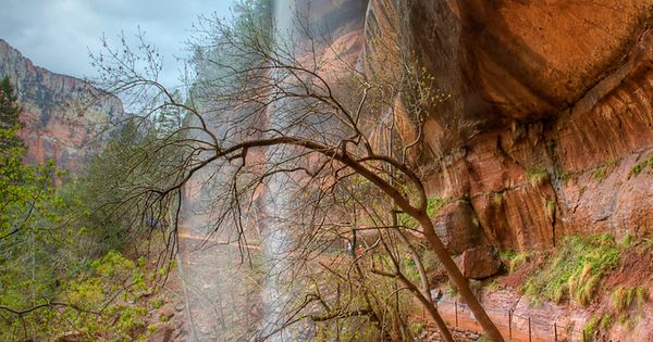 Completed: Zion's Emerald Pools hike in UT