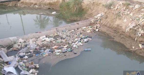 فيصل الثعلبي يؤكد أن البيئة البحرية لعدن مهددة بالفناء Outdoor Water River
