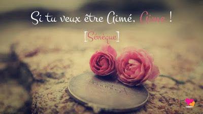 100 Citations D Amour Que Tout Le Monde Devrait Savoir