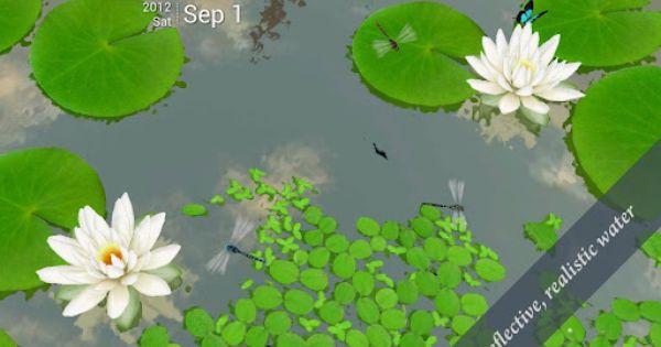 3d Lotus Live Wallpaper V1 6 Apk Requirements 2 2 And Up Overview Relaxing 3d Scene Of Lotus Pond Fully 3d View Of Tr Lotus Pond Live Wallpapers Wallpaper