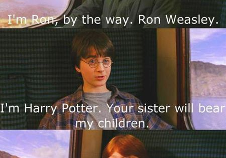 Hi, I'm Harry Potter. The look on Rons face... i laughed wwwwwaaaaayyyyy