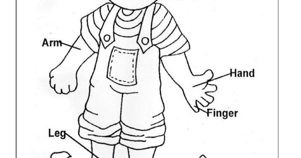 body part coloring pages - photo#22